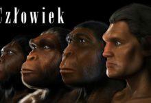 Photo of Człowiek i jego ewolucja