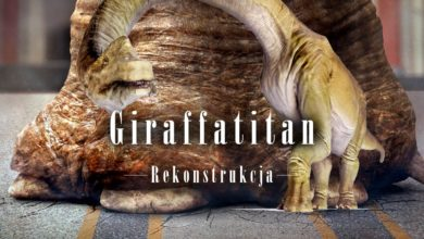Photo of Giraffatitan – rekonstrukcja dinozaura