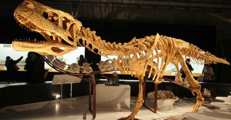 Photo of Ogromne dinozaury o których nigdy nie słyszeliście