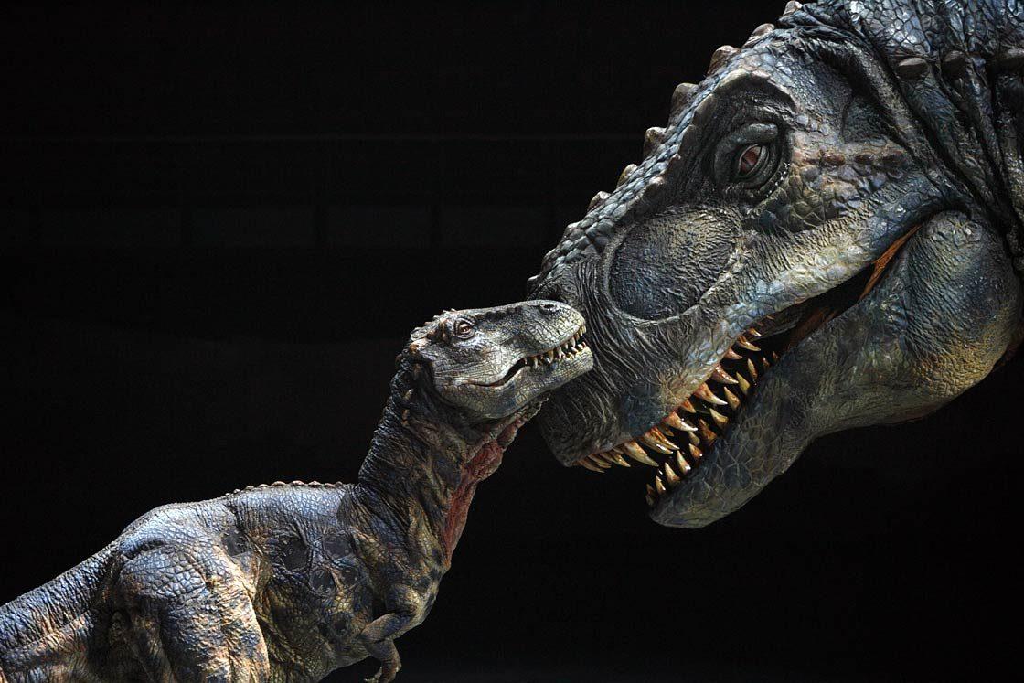Dinoanimals Pl: Seks Dinozaurów
