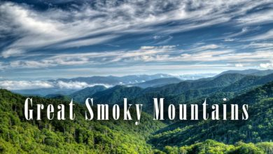Photo of Park Narodowy Great Smoky Mountains