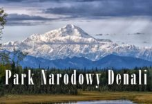 Photo of Park Narodowy Denali – w sercu Alaski