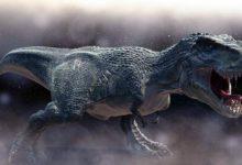 Photo of Wszystko o tyranozaurach