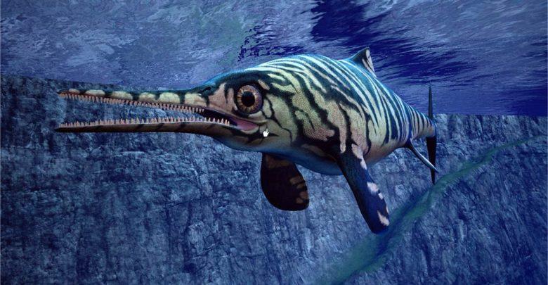 Photo of Oftalmozaur (Ophthalmosaurus) – ichtiozaur z ogromnymi oczami