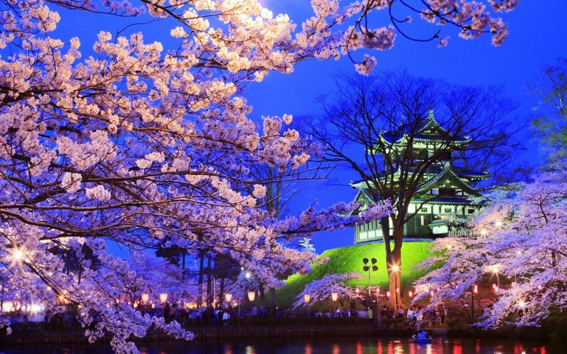 Dinoanimals Pl: Sakura – Wiosna W Tokio