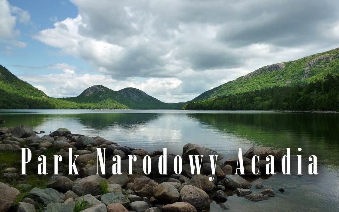 Dinoanimals Pl: Park Narodowy Acadia