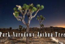 Photo of Park Narodowy Joshua Tree