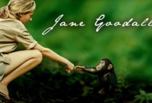 Photo of Jane Goodall i jej historia