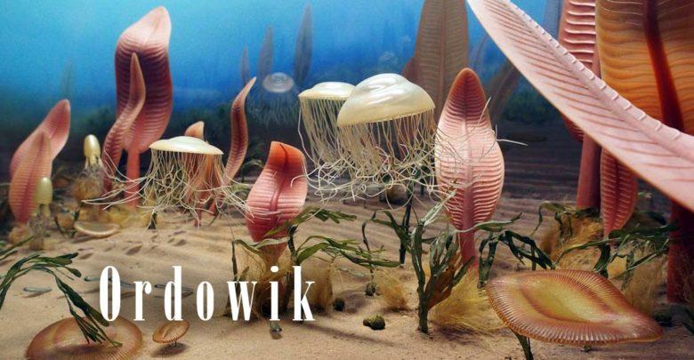 Photo of Era paleozoiczna – Ordowik