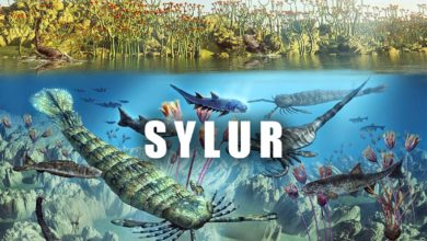 Photo of Era paleozoiczna – Sylur