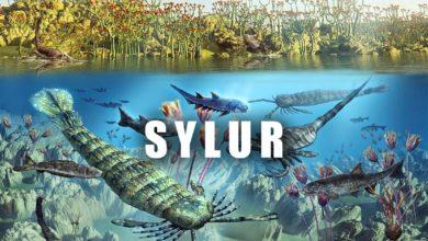 Photo of Era paleozoiczna – Sylur