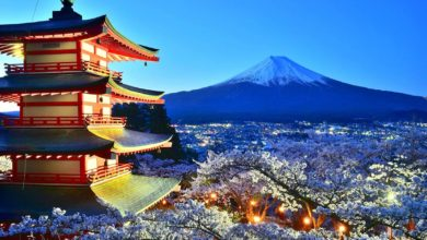Photo of Japonia – dziwny jest ten świat. Klasyczne zakupy