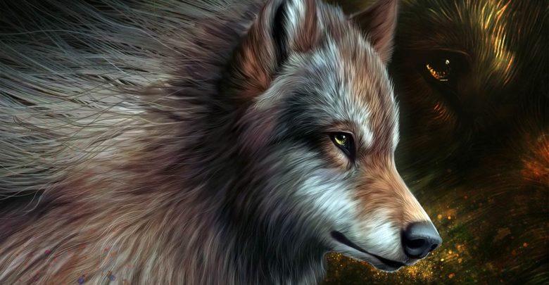 Photo of Starożytni haruspikowie, czyli wróżenie ze zwierząt