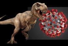 """Photo of Prehistoryczny """"koronawirus"""" zabijający tyranozaury"""