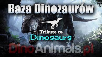 Photo of Baza dinozaurów – największa na świecie
