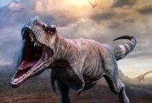 Photo of Król teropodów – największy teropod