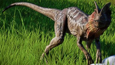 Photo of Dilofozaur (Dilophosaurus) – nowy opis