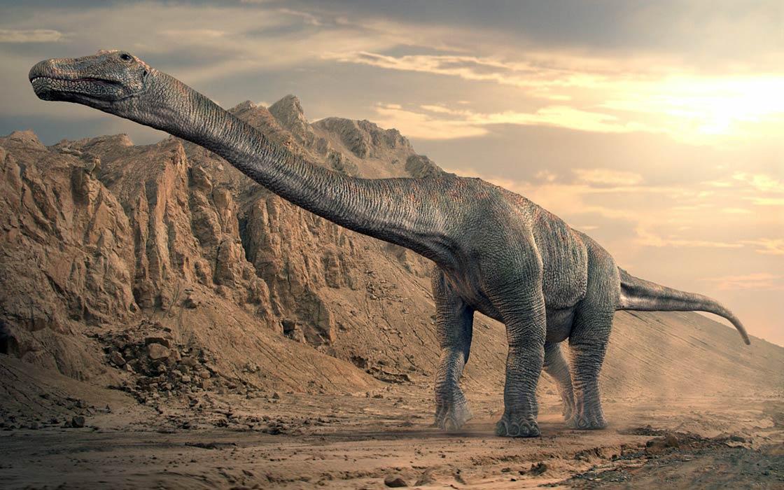 Photo of Jak duży był Bruhatkajozaur (Bruhathkayosaurus matleyi)?