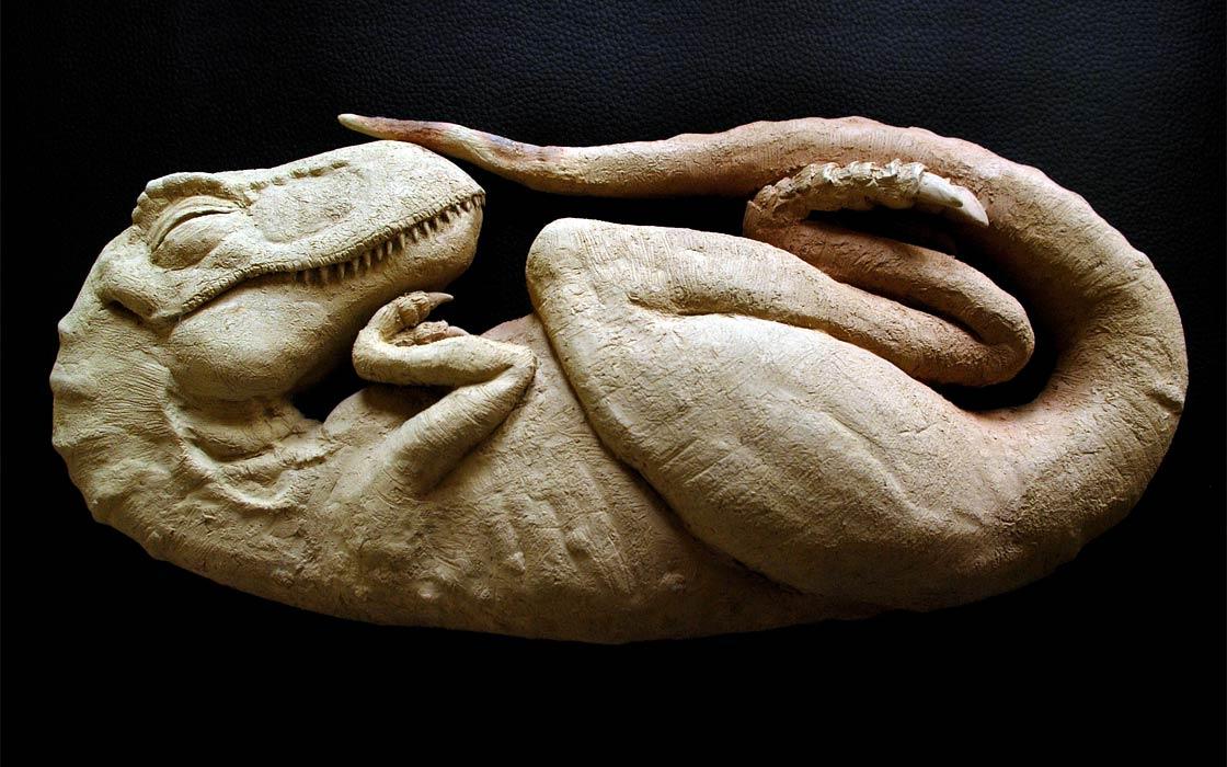 Photo of Odkrycie embrionów tyranozaura