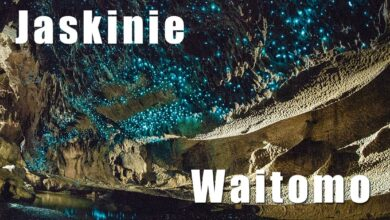 Photo of Jaskinie Waitomo (Waitomo Glowworm Caves)