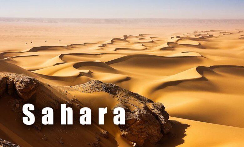 Photo of Sahara – największa pustynia
