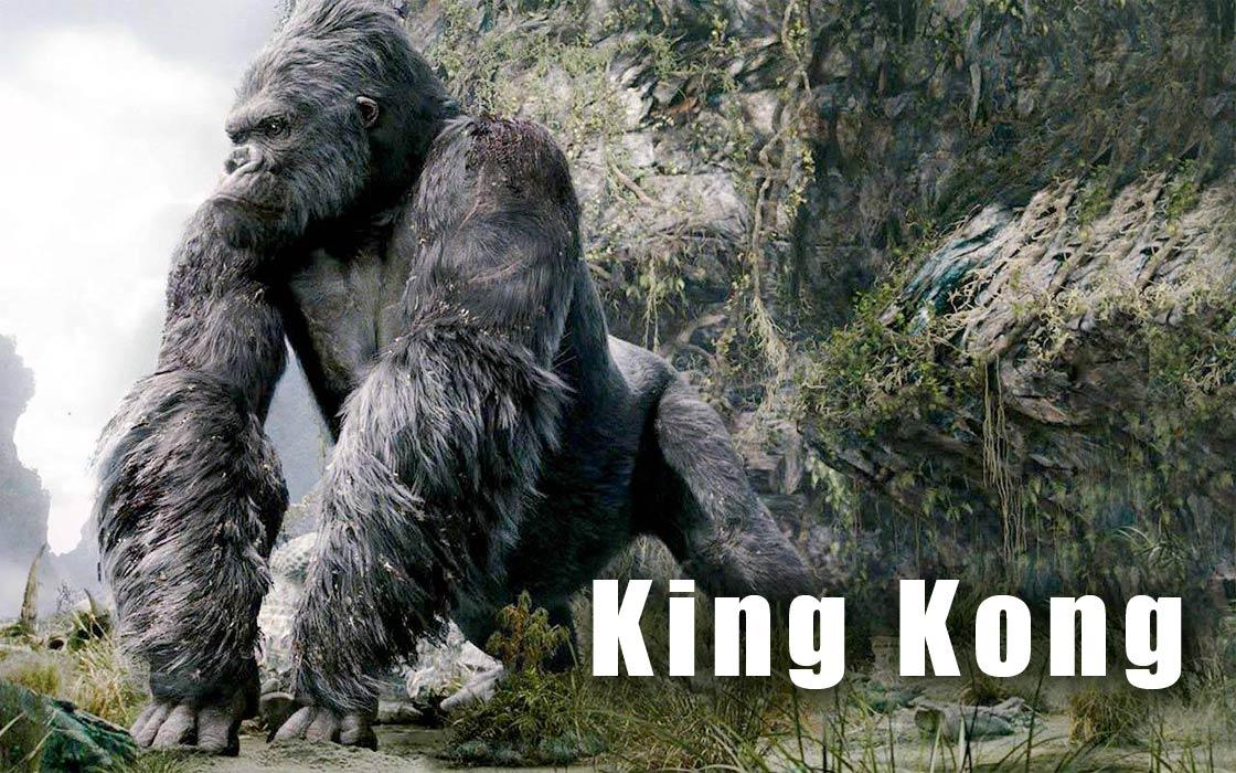 Photo of Czy King Kong byłby gatunkiem zagrożonym?